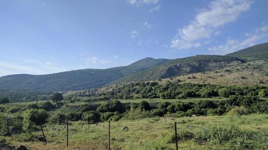 satele